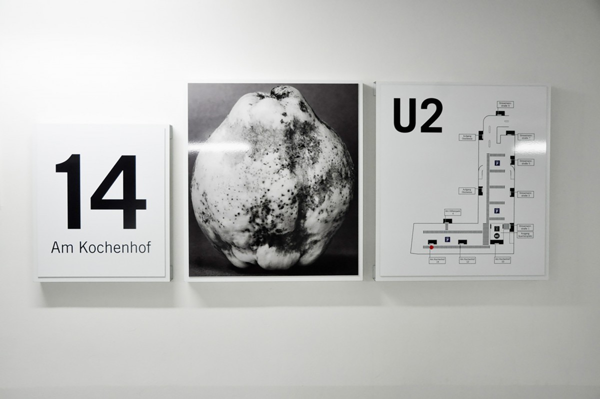 Eva Plass: <strong>Killesberghöhe Stuttgart</strong><br> &ndash; Signaletik / bei Integral Ruedi Baur Zürich / 2013